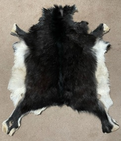 Photo of Goat Pelt - Black w/White Accents