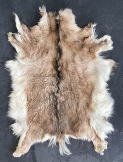 Photo of Goat Pelt - Tan Chamoisee w/Dark Dorsal
