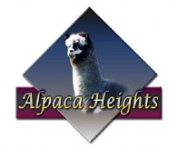 Alpaca Heights - Logo