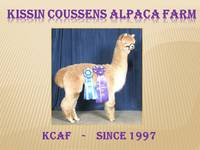 Kissing Cousins Alpaca Farm  - Logo