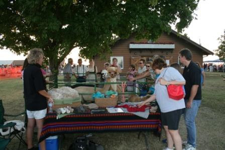 Alpacas at the 2010 Lion's Club Ernte Fest in Freistatt, MO