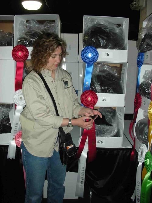 2009 World Fleece Show-Ayashe's 3rd.