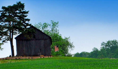East to West Farm sits on 24 acres of beautiful rolling pasture where our alpacas graze serenely