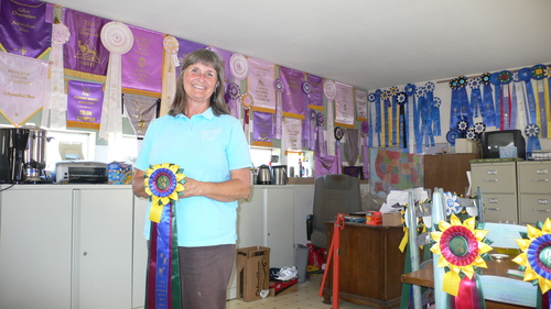 Cindy in her office decked with numerous show ribbons