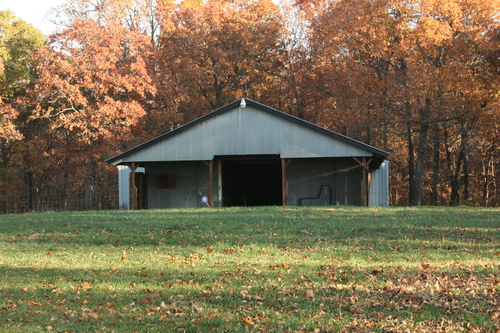 The Girls Barn