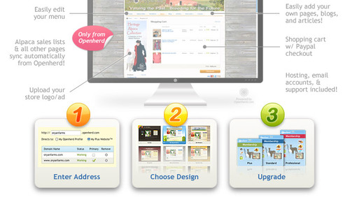 3 easy steps to a new website!