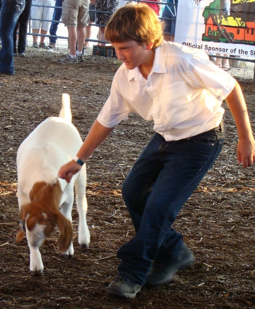 Cody and a Goat