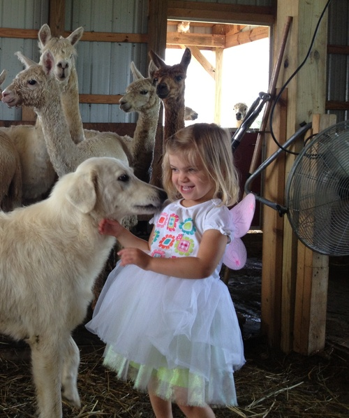 Our Fairy Farmer Princess