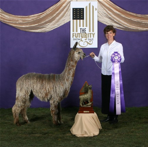 The Futurity, Gray Female, Color Champion, 2009