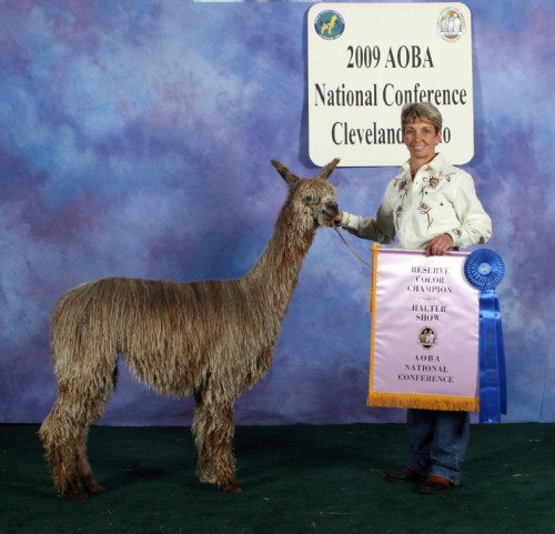 AOBA Nationals, Reserve Color Champion, 1st 2009