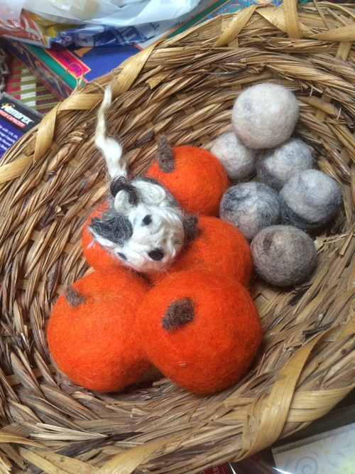felted dog & cat toys