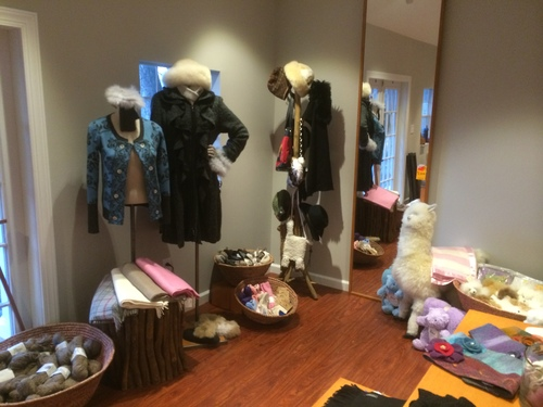 Gift Shop ready for shoppers!