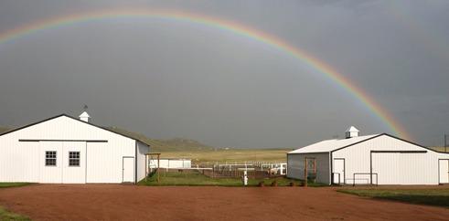 Linden Hills Alpaca Farm