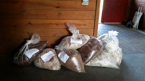 Our fleeces at the Little Creek Farm collection site