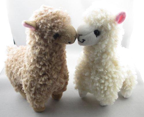 Openherd Jerae S Unity Alpacas Alpaca Product And