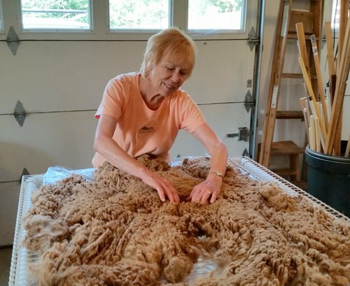 Skirting Carmella's Fleece
