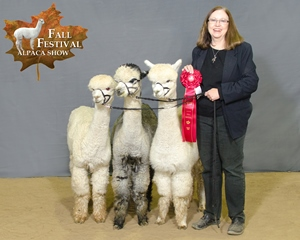 Breeder's Best Three