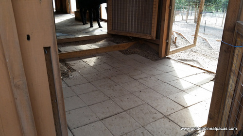 Pavers at a west barn entrance