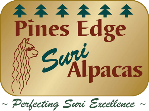 PINES EDGE SURI ALPACAS