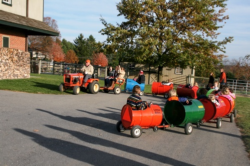 Barrel Train Rides!