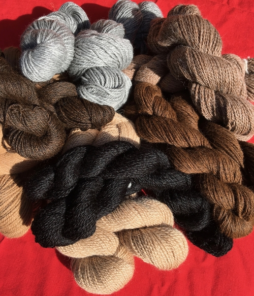 Fiber by our alpacas, Yarn by  Six Paca Farm.