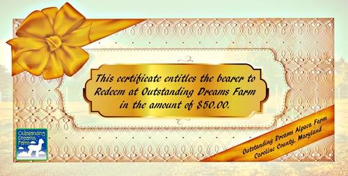 $50.00 Certificate