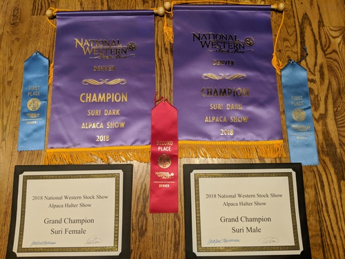 Our awards for the whole show!