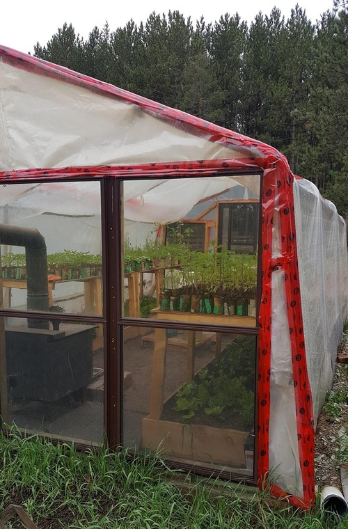 Heated greenhouse for the win!