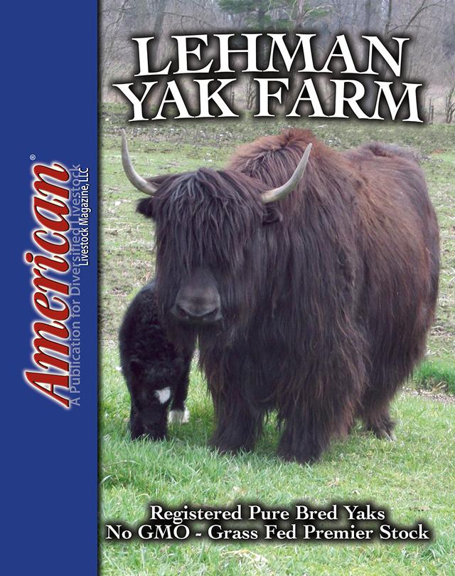 Yakzz: Lehman Yak Farm Is A Yak Farm Located In Goshen