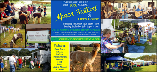 Our Annual Fall Alpaca Festival takes place September 15th, 2018 and September 16th, 2018.
