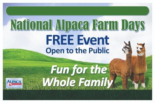 National Alpaca Farm Days to Take Place in Preston, Maryland