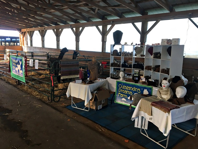 Outstanding Dreams Farm's booth