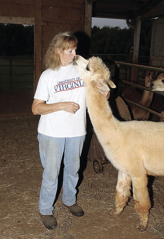 FARMHER: Alpaca farming has rewards