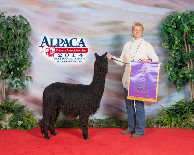 Openherd: Nebraska Alpaca Company is a farm located in Geneva