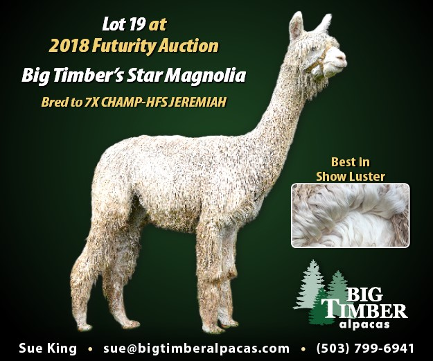 Star Magnolia-sold in 2018