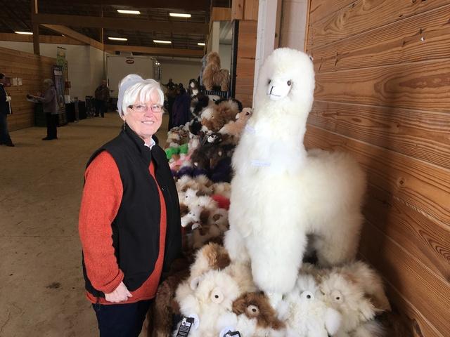 Vickie's new alpaca