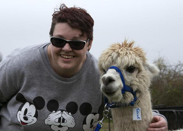 Alpacas are the stars as farm helps people with learning difficulties