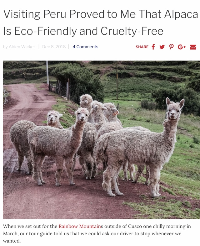 https://ecocult.com/cashmere-is-over-long-live-alpaca/
