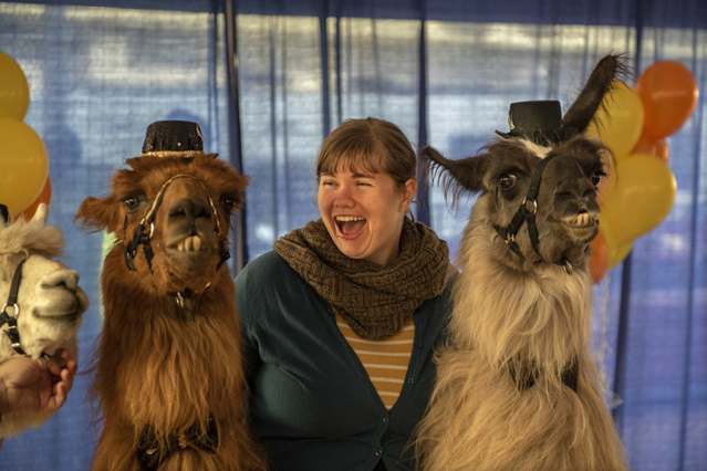 Rojo the Llama stars at his retirement party in Portland