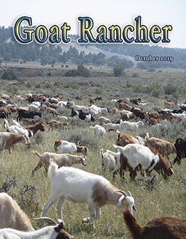 Featured in the October issue of Goat Rancher (pages 10 & 11).