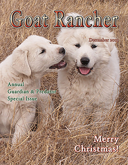 Featured in December issue of Goat Rancher (pages 16 & 18).