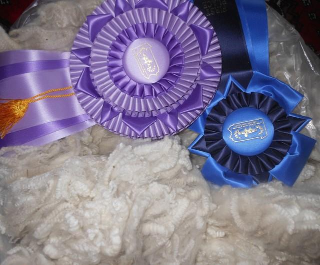 PAOBA champion fleece