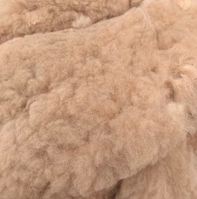 Alpaca Fleece - Fawn
