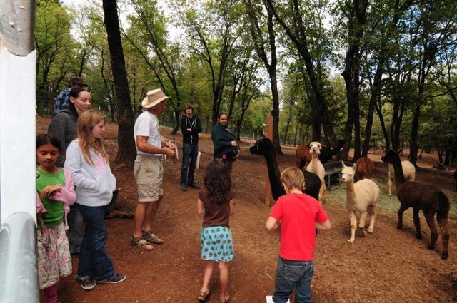 Pre-COVID-19 Farm Tour Pictures