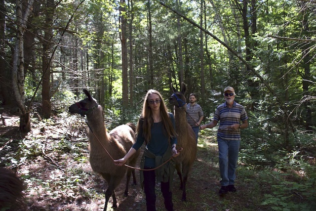 September 2020 - Llama Nature Trails Walk