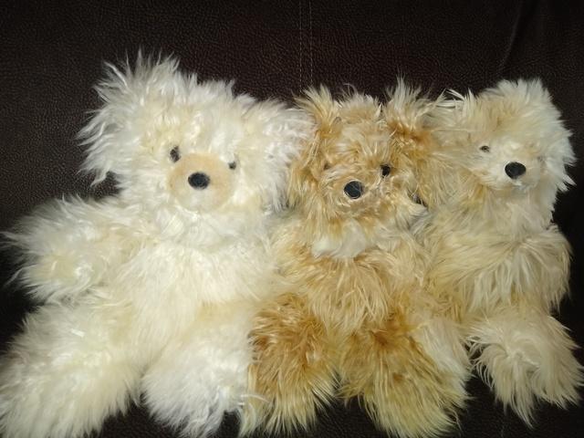 Tan Suri Bears