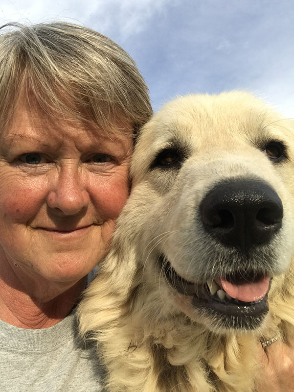 Meet Spice! We have a LGD (livestock guardian dog) on duty at all times. Her job is to protect her alpacas.