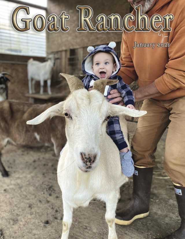 Featured in the January issue of Goat Rancher (page 19-20).