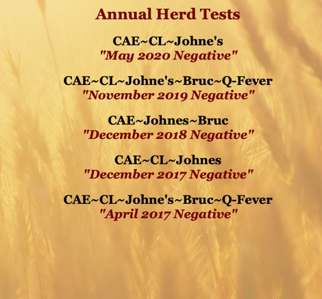 WADDL Herd Tests