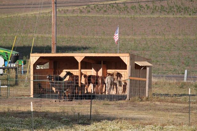 Custom skid shelters